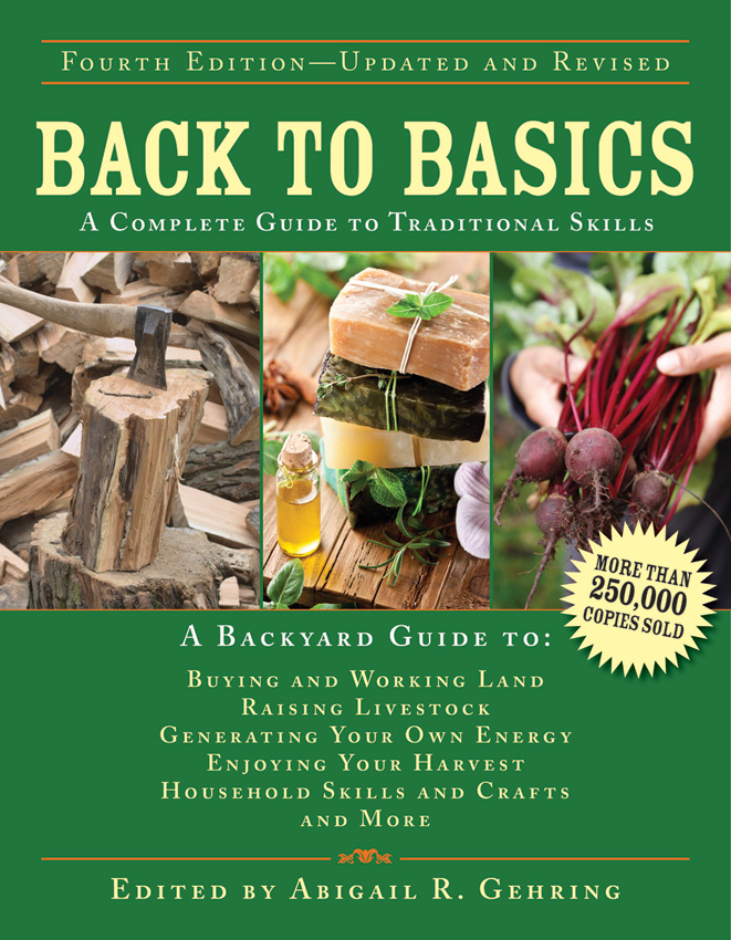 BK314 Book - Back to Basics