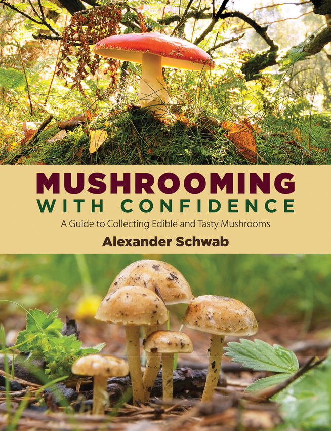 BK322 Book - Mushrooming with Confidence