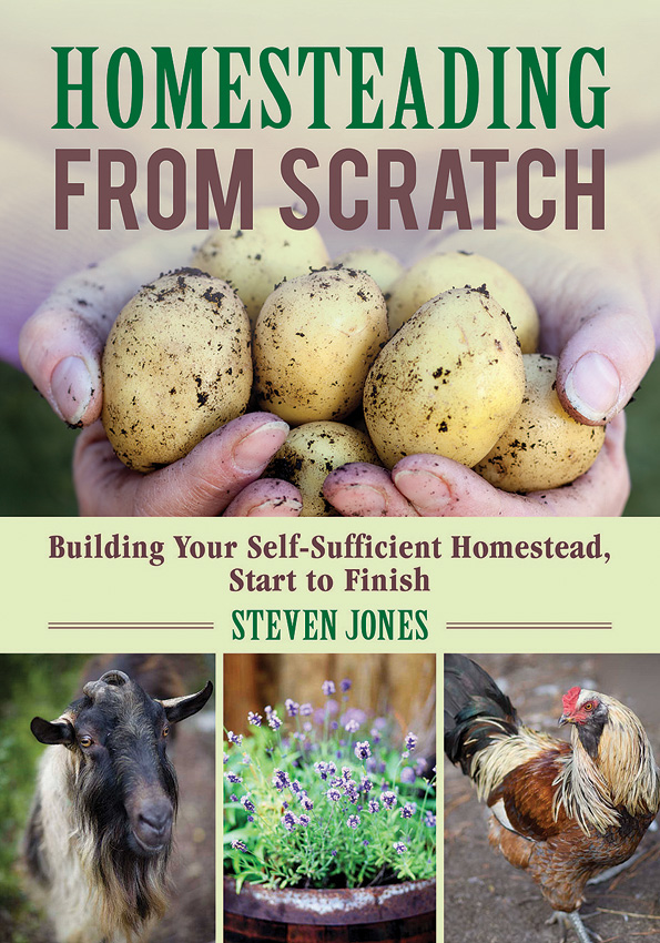 BK371 Book - Homesteading From Scratch