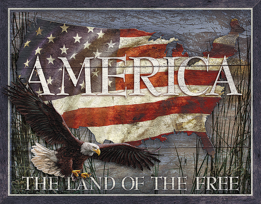 TSN2159 Tin Sign - America Land of Free