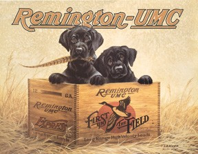 TSN0932 Tin Sign - Remington Finders' Keepers