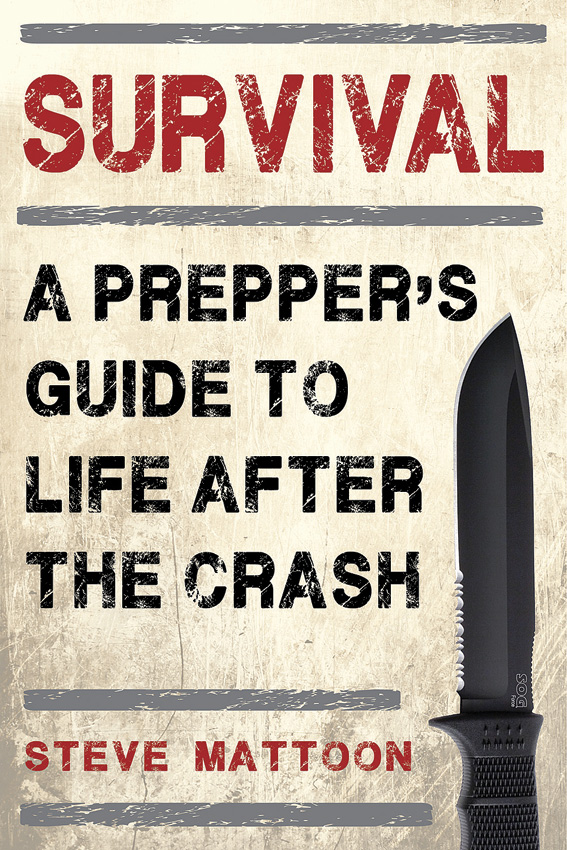BK362 Survival: A Prepper's Guide Book