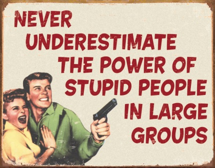 TSN1553 Tin Sign - Stupid People